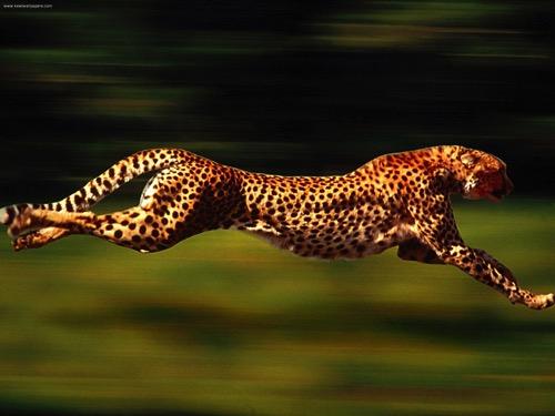 #376 Velocity Based Training(VBT)が流行っているけど、その前に正しいフォームの習得を優先したほうがいいんじゃないかしら?