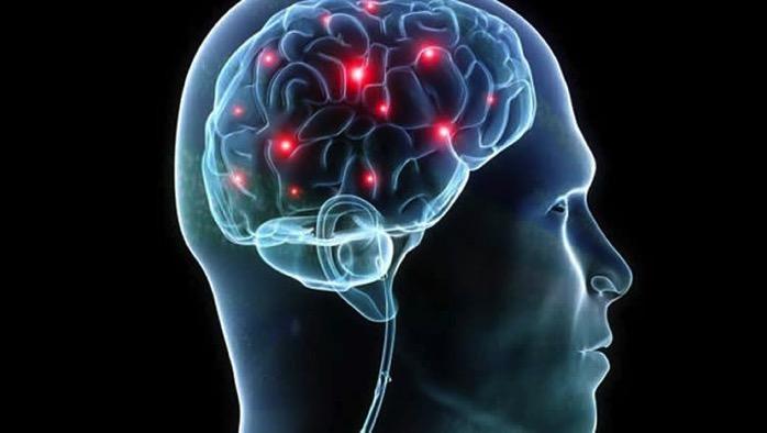 Brain map autism neurosciencenews