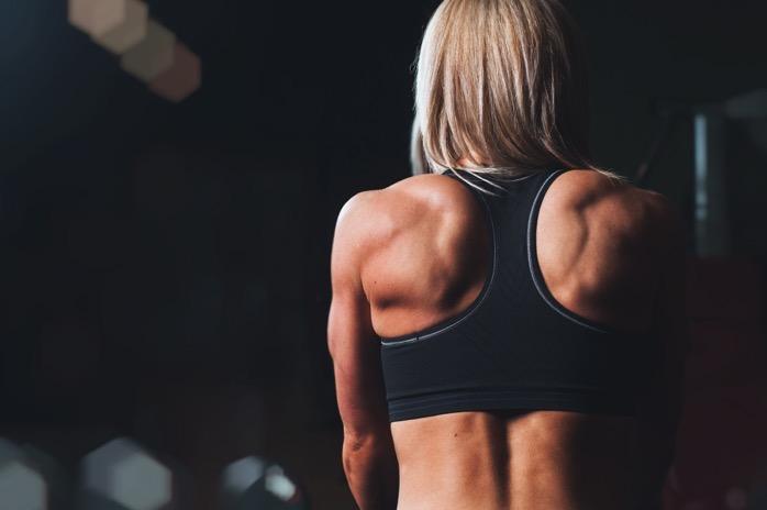 Back bodybuilding exercise 28061