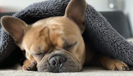 #761 睡眠不足が連日続くと持久系パフォーマンスが低下するけど、たくさん寝ると逆にUPする
